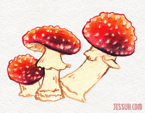 Watercolor painting of a trio of amanita muscaria mushrooms