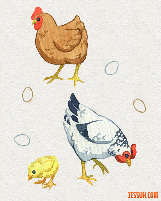 Watercolor painting of a brown hen, a white hen, a chick and some eggs